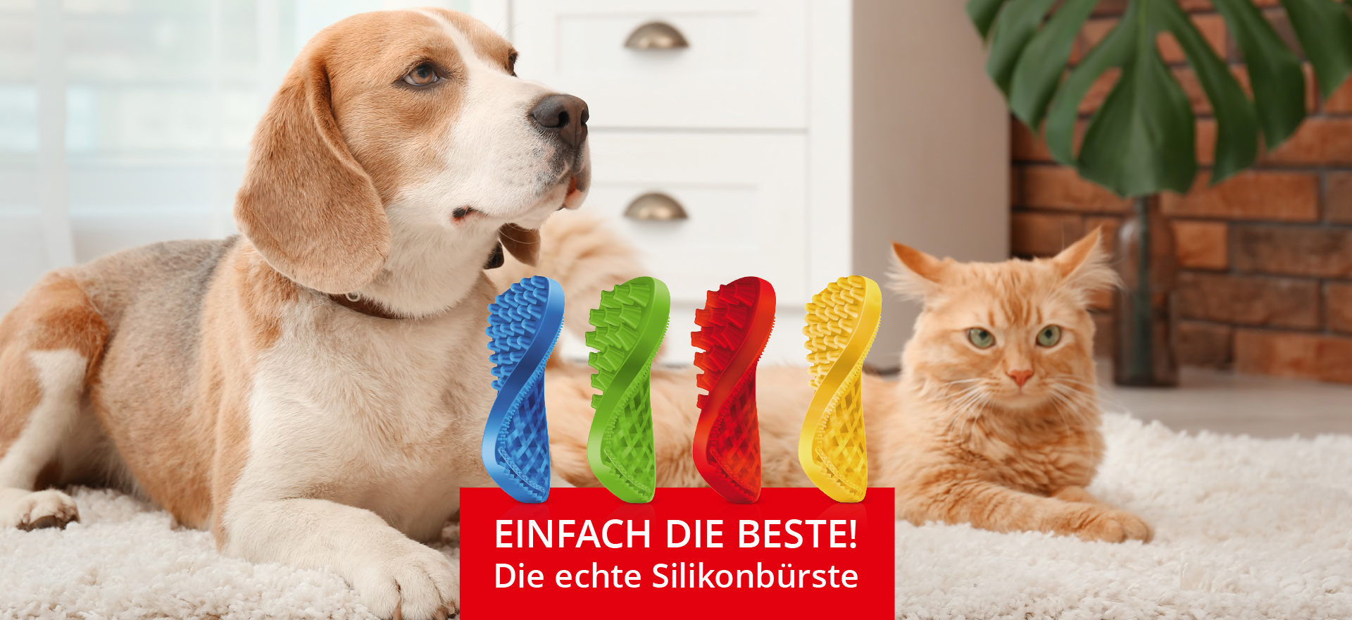 Slide pet+me® Bürsten